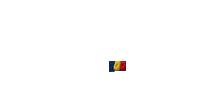 CECCAR 100 Logo